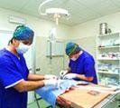 l'ambulatorio