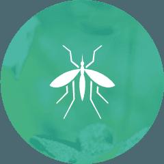 Mosquito Tick Exterminator Control Service Massachusetts Rhode Island