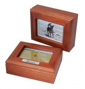 Photo box for your pet