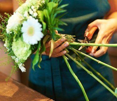 cura del verde, fiori freschi, piante sempre verdi