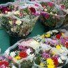mazzi di fiori, vasi, salute delle piante