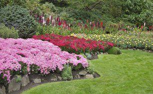 A garden flower bed