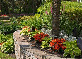 A wall planter