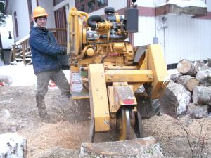 Stump removal in Juneau, AK