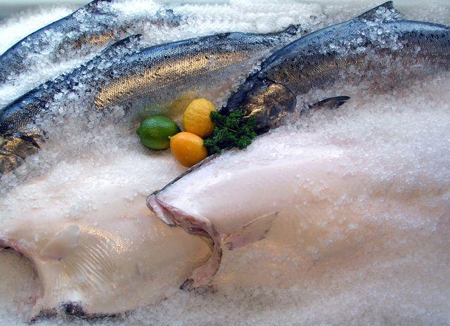 Salmon and Halibut