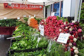 Red Dog at the Farmers Market