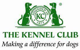 Gun dog sales - Thetford, Norfolk - Buttershall Gun Dogs - Kennel club logo