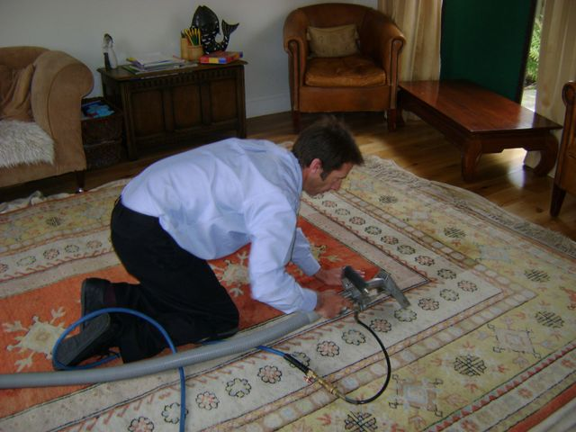 Premium carpet services