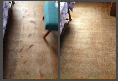 floor before and after cleaning