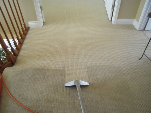 full carpet cleaning