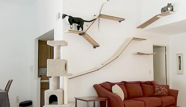 Cat Shelves Shelf Modular Modern