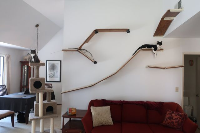 cat shelves cat trees modern modular and elegant cat furniture rh catscapes com DIY Cat Furniture modern cat shelves uk