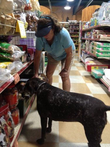 Customer visiting with their pets at Clifton, TX