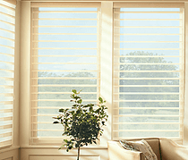 Hunter Douglas Blinds NJ