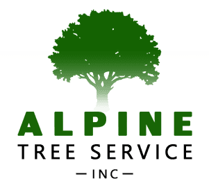 Your Tree Removal More Specialists Alpine Tree Service Inc