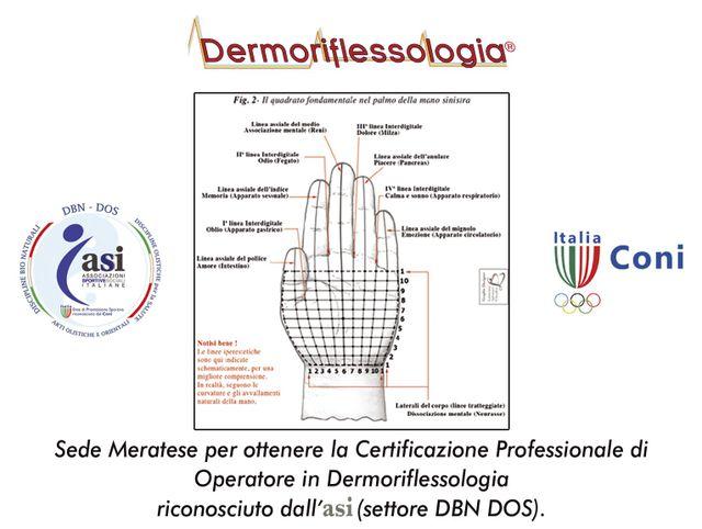 dermoriflessologia - schema