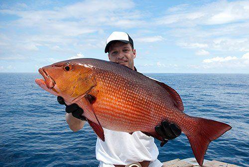 fishing charters Pensacola Beach, FL
