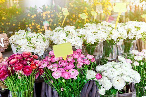 vendita al dettaglio vari fiori