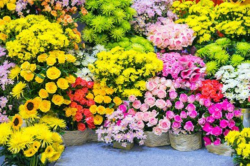 fiori vari in vendita