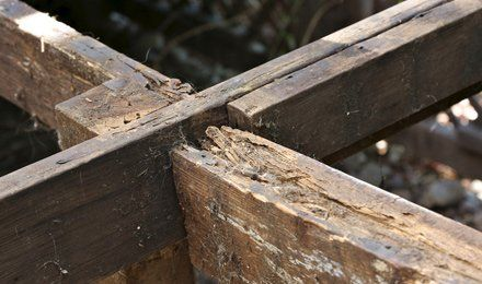 Protect your home structural integrity