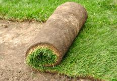 rifacimento manto erboso