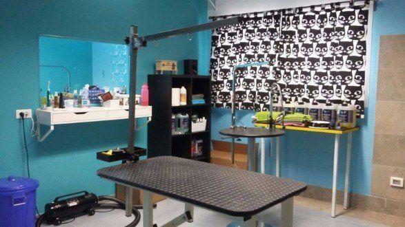 Lettino per animali nello studio per toeletta