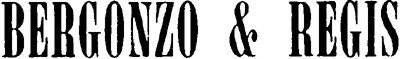 Onoranze Funebri Bergonzo E Regis snc logo