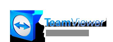 Bildresultat för team viewer