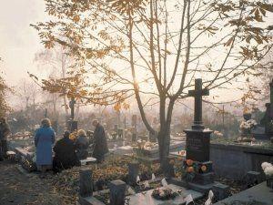 consulenza cimiteriale