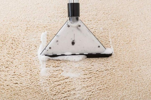 Carpet Cleaning Services Removing A Stain in Gilbert, AZ