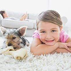 Pet Stain Removal All State Carpet Amp Tile Care Queens