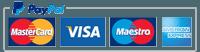 PayPal, Maestro card, Master card, Visa, American Express