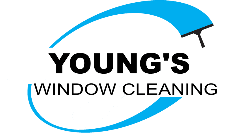 youngs window cleaning sandown s expert window cleaners rh youngswindowcleaning co uk window cleaning logos in images window cleaner logos