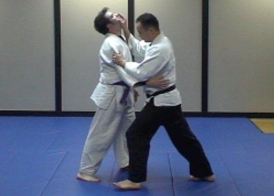 What is Ju Jitsu