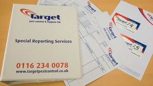 Special reporting services