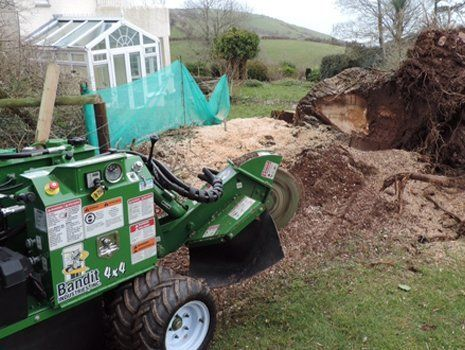 stump removal equipment