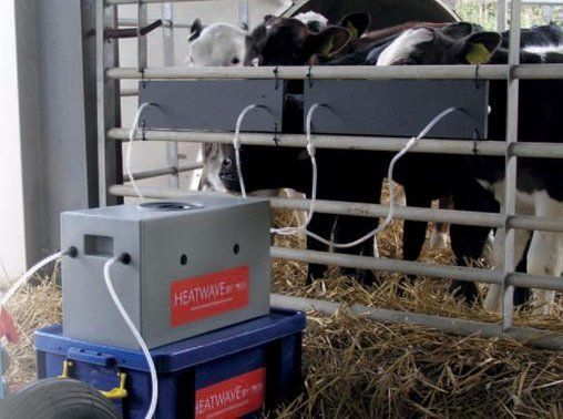Heatwave Milk Warmer