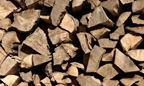 log cutting