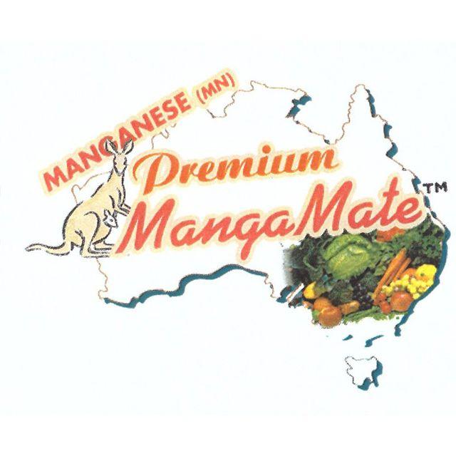 Premium MangaMate Logo in Avezzano