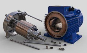 Electric motor fixed