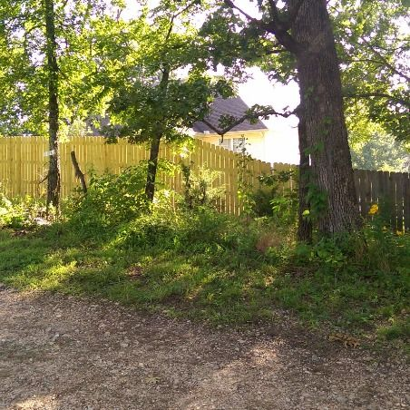 Treated Privacy Fence tapered to 6' West Plains, MO