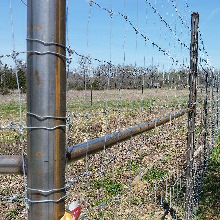 8' Game Fence Missouri and Arkansas Border