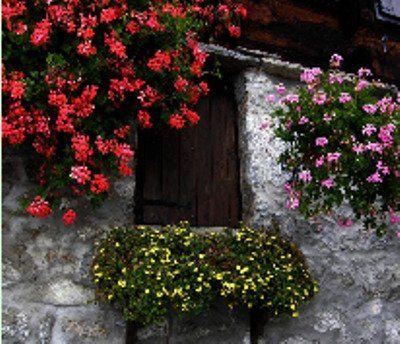 finestra vista dall'esterno, pareti a fianco decorate con composizioni floreali