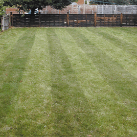 lawn-turfing-wandsworth-london-all-about-gardens-lawn-turfing