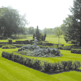 garden-services-wandsworth-london-all-about-gardens-garden-services