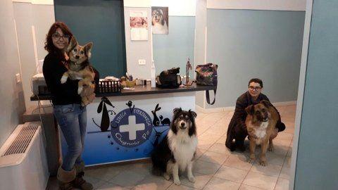 veterinari in posa con i cani ricoverati