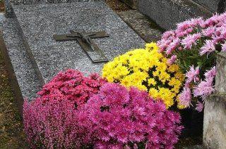 fiori per cimitero