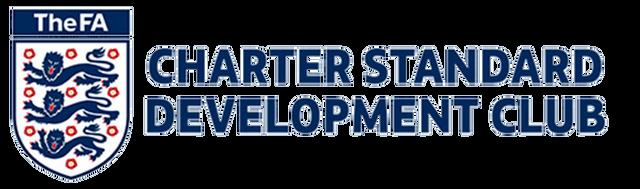 Image result for charter standard development club logo