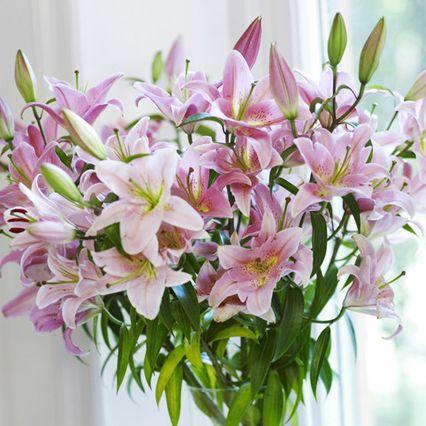 hand-cut flowers
