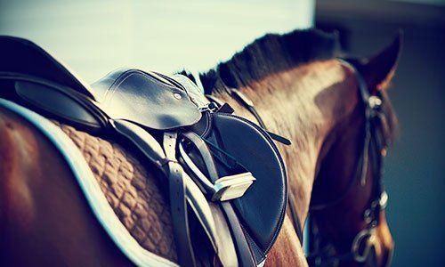 Sella con staffe su una parte posteriore di un cavallo